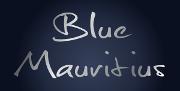 Izdelava spletne strani Blue Mauritius